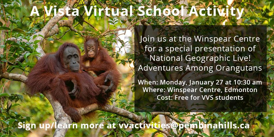 National Geographic Live: Adventures Among Orangutans
